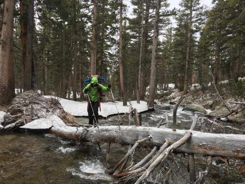 Crossing the icy log...
