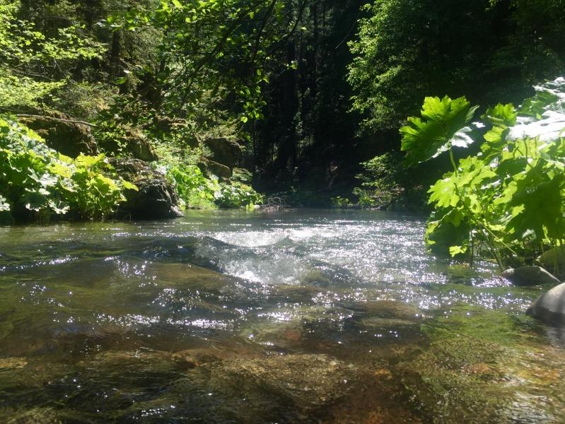 Squaw Creek.  Took a long break here.