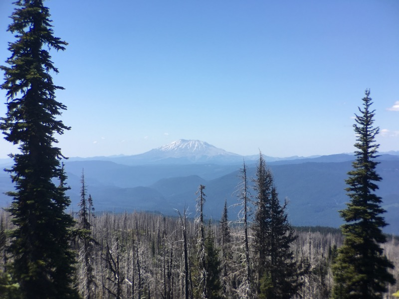 Looking west to Mount Saint Helens.